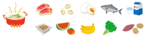 イラスト-食材-タンパク質-野菜-シチュー